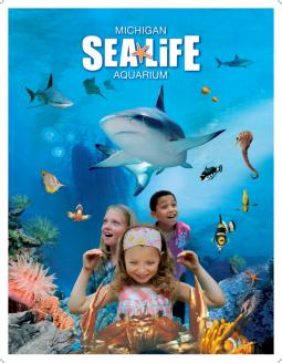 sea-life-michigan-e1418830939434